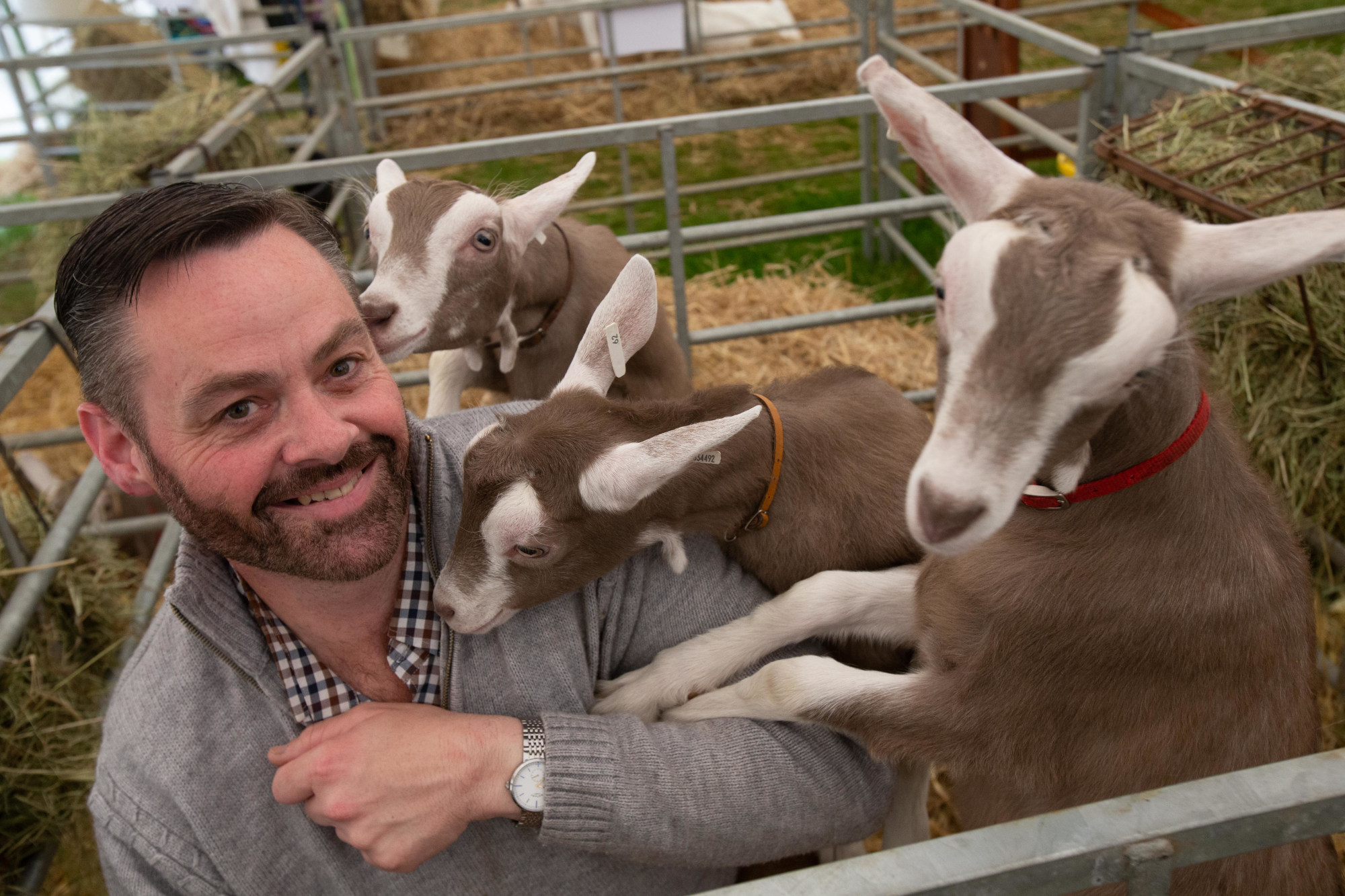 Royal Three Counties Show - Ray Wiffen with Toggenburg Goats.jpg